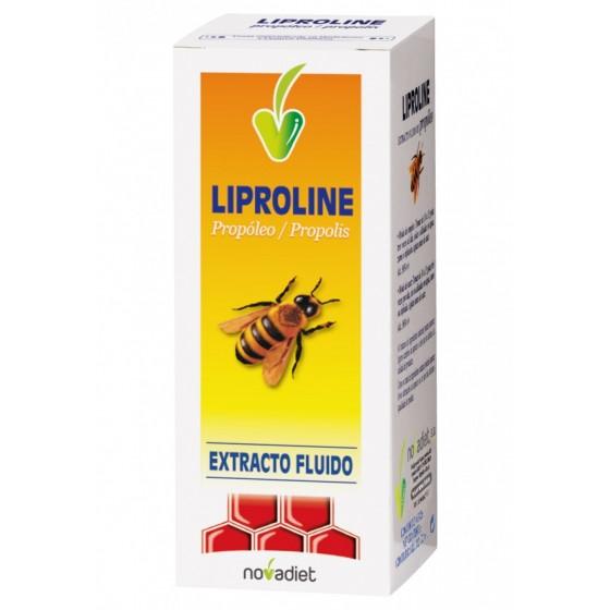 LIPROLINE EXT FLUIDO